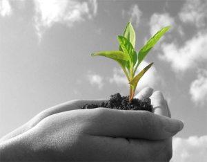 Tanah subur untuk kesinambungan kehidupan sejagat