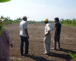 Tanah Bekas Tanam Sayuran di Sg Leman