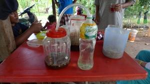 Penyediaan MOL - Mikro Organisme Lokal