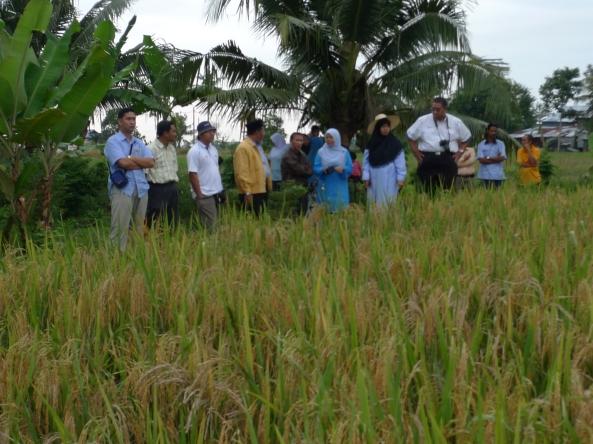 Rakan-rakan Dari Jabatan Pertanian Daerah Sabak Bernam
