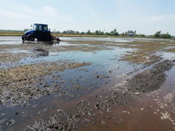 Bajak Niplo - Merata Tanah Dalam Air