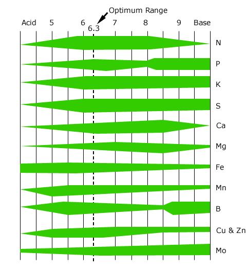 Carta pH & Pengambilan Nutrien Oleh Tanaman