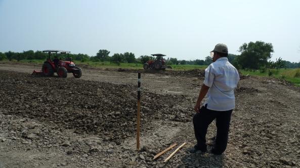 Padi SRI Selangor : Talib Mengawasi Kerja Tanah Menyediakan Petak Sawah