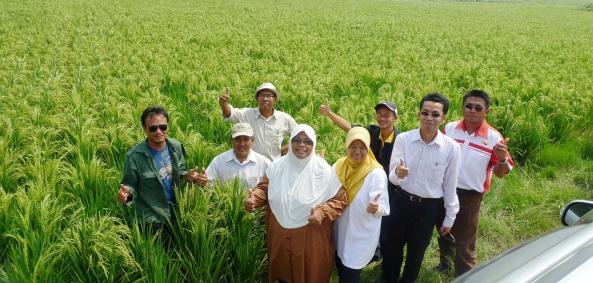 Padi SRI Selangor Team