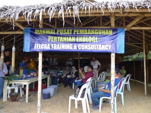 Padi SRI Selangor : Bengkel Pertanian Ekologi, FTC, Seberang Perak