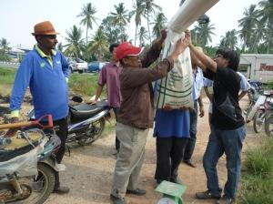 Padi SRI Selangor : Hasil Padi 'Strip Harvesting' Yang Terakhir