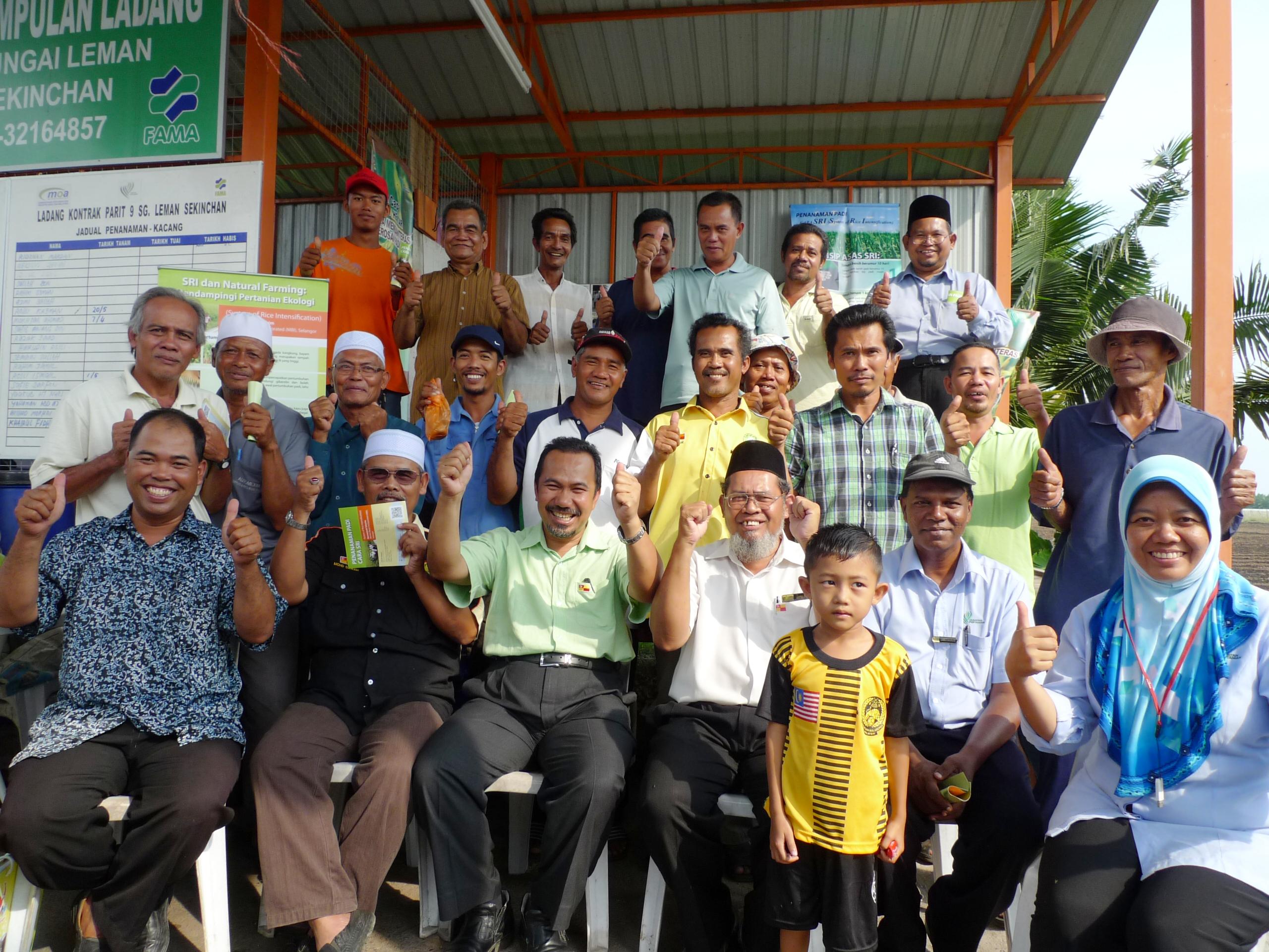 Sg Leman Weblog Padi Selangor Pertanian Selangor