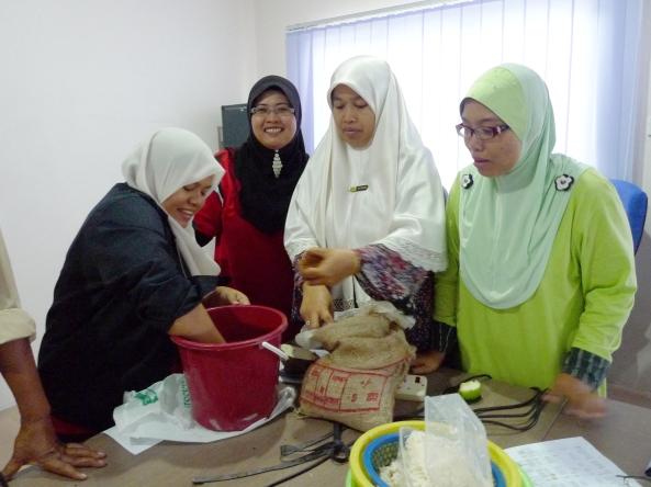Padi SRI Selangor : SRIkandi Jabatan Pertanian Negeri Selangor Membuat IMO2