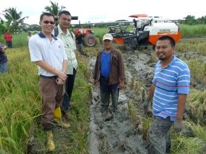 Padi SRI Selangor : SRI Organik PLKP, Tg Karang