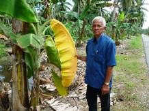 Tuan Hj Munir bin Hj Hassan, Kg Tebuk Jawa, Sabak Bernam