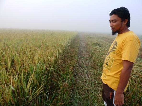 SRI ORGANIK : Saudara Roslan Mendapat Harga Istimewa Untuk Padinya