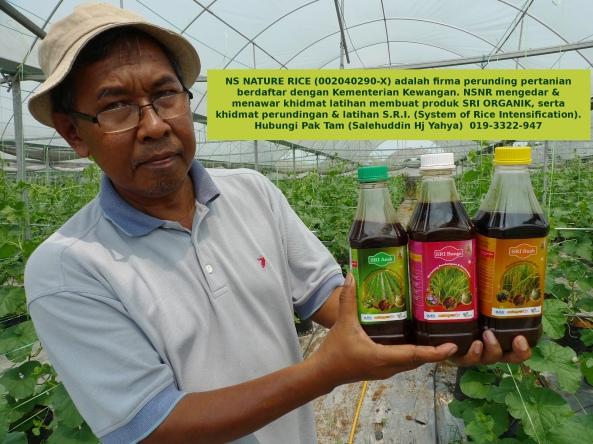 SRI ORGANIK : NS Nature Rice Firma Perunding Pertanian - Hubungi Pak Tam 019-3322-947
