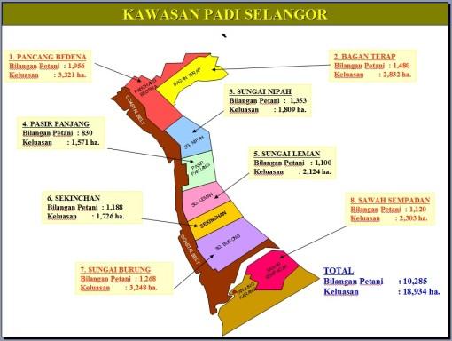 Kawasan Padi Selangor